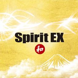 Spirit EX ~和~